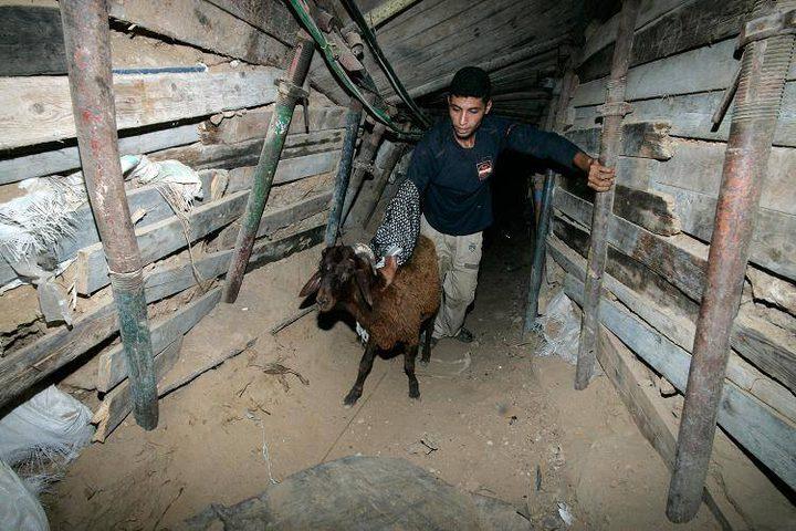 تجارة الأنفاق في غزة تعود إلى الحياة