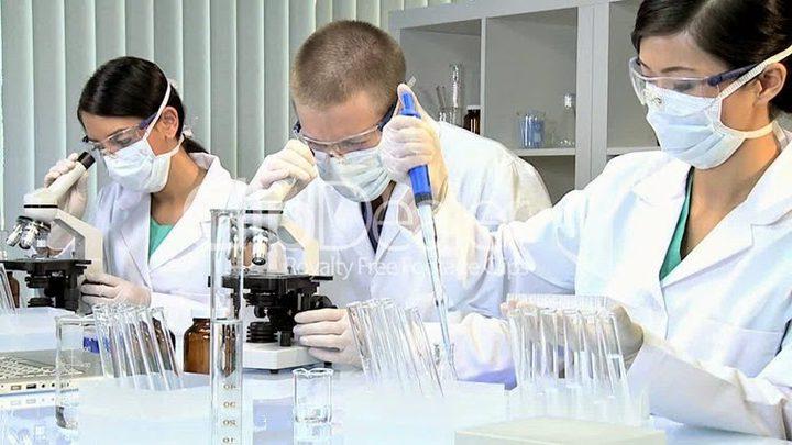 كلى مصنعة في المختبر