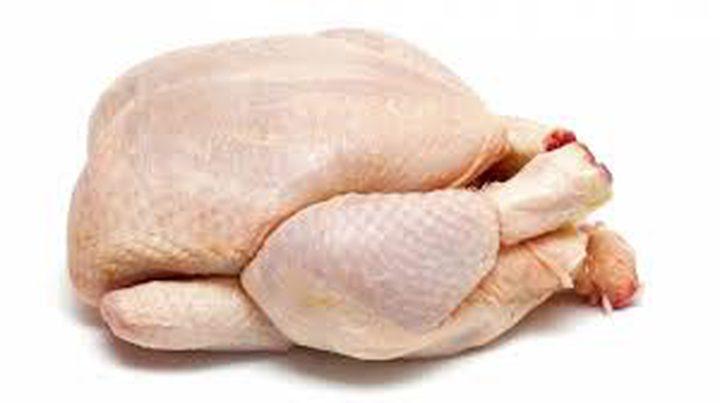"""الصقيع """"يسخن"""" أسعار الدجاج اللاحم و""""المستهلك"""" توضح"""