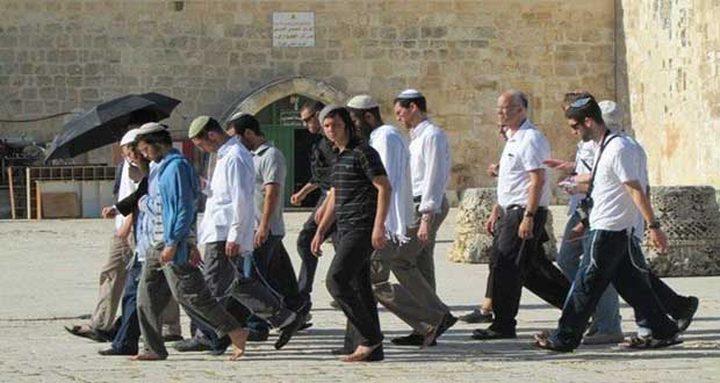 المستوطنون يقتحمون المسجد الأقصى من جديد