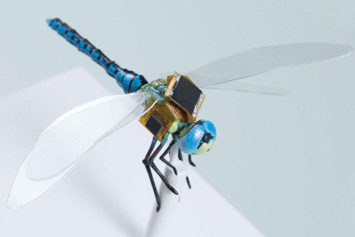 الهندسة الوراثية تلجأ لطائرات بدون طيار