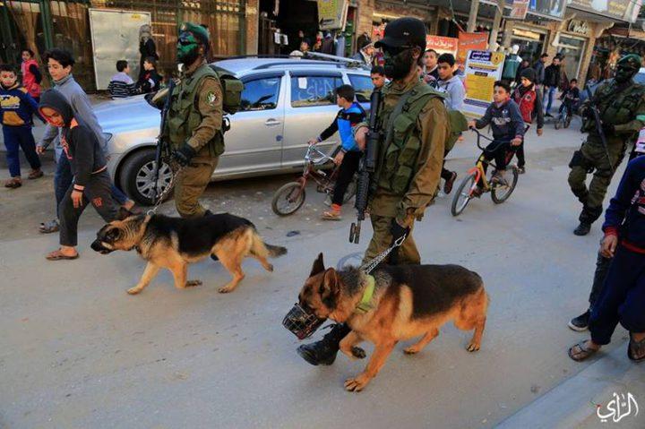 """""""كلاب"""" القسام تقلق """"إسرائيل"""""""