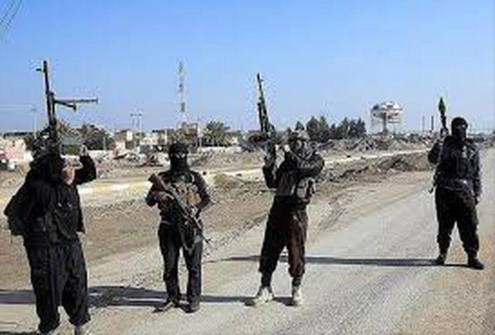 داعش تقتل 12 عنصرا من القوات السورية