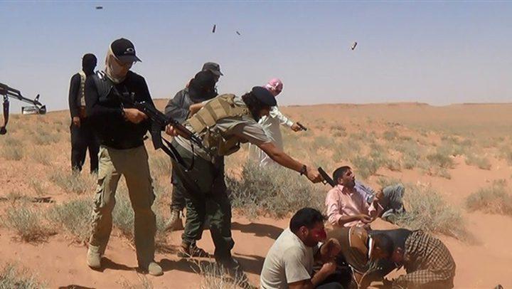 أشرف أبو الهول: مصر تواجه داعش بإستراتيجية الهدوء المحكمة