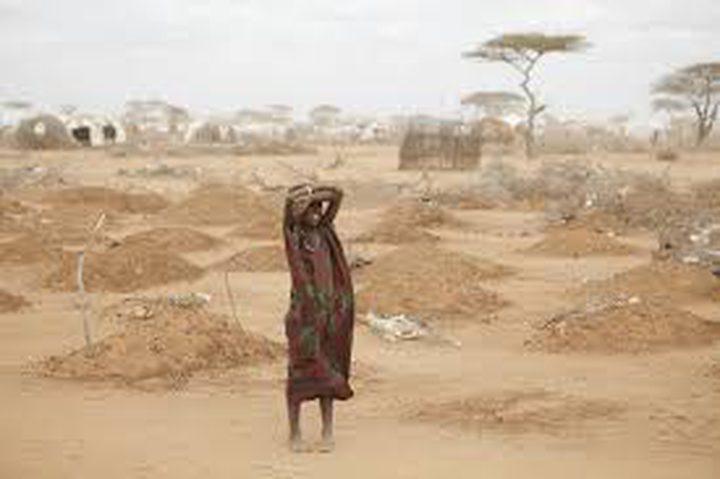 الجفاف يضرب كينيا