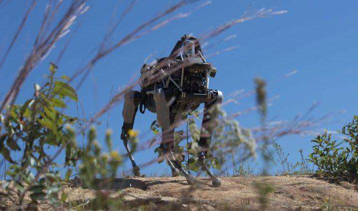 غوغل تبتكر روبوتا بقدرات خرافية