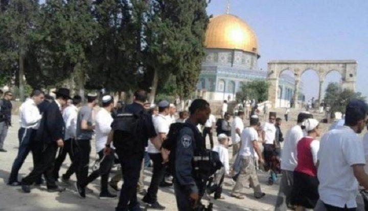 شؤون القدس تحذر من مخاطر اقتحامات الاقصى