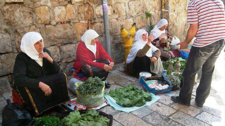 فلاحاتُ القدس.. معركة الحياة وبرتوكولات الاحتلال