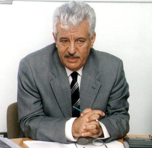 الشوبكي: الدول العربية أكدت بشكل حاسم مركزية القضية الفلسطينية