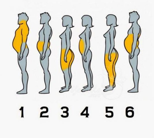 أي جزء من جسمكم أكثر سمنة ؟
