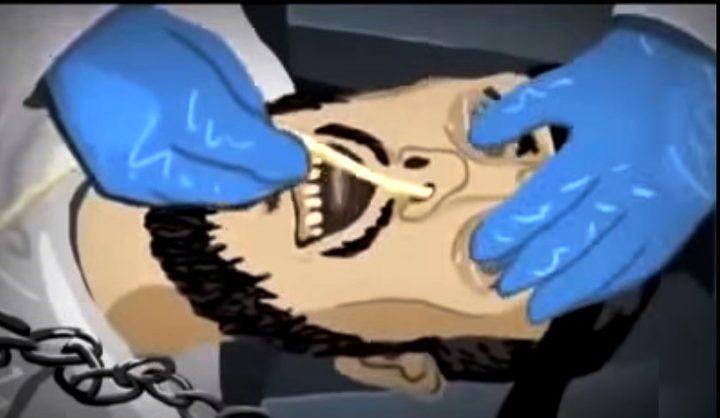 الاحتلال يدرس استقدام أطباء أجانب لإطعام الأسرى قسريًا