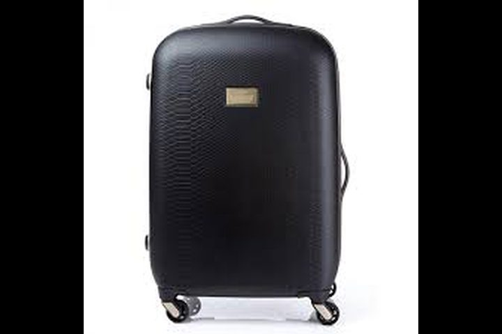 أغرب ما يمكن إيجاده في حقيبة مسافر روسي