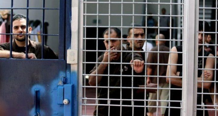 محكمة الاحتلال تسمح للمحامين بلقاء الأسرى المضربين
