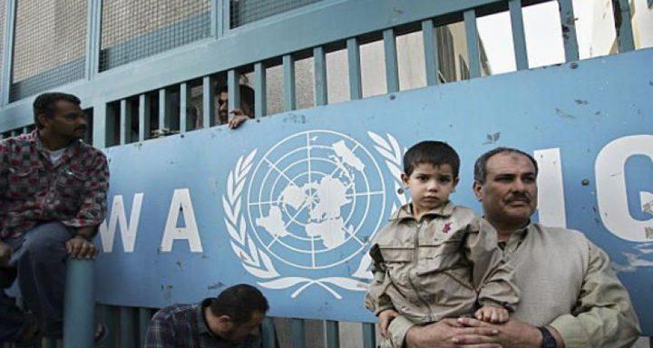 """وكالة الغوث """"الأونروا"""" تعمل على تقليل أثر تهاوي الأقتصاد في غزة"""