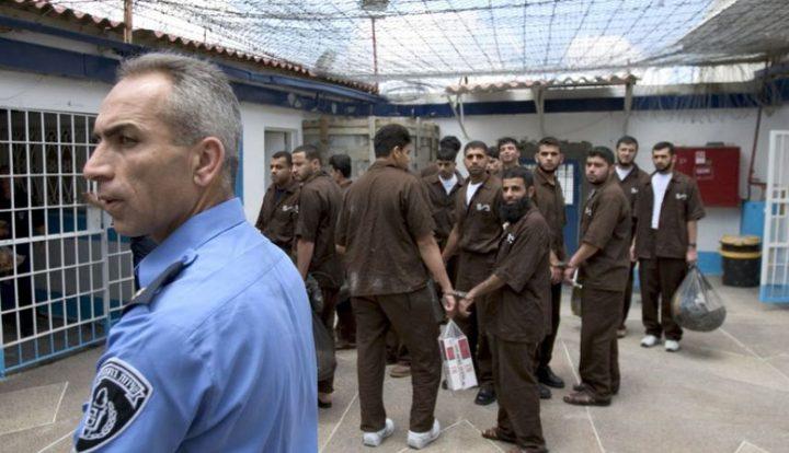 """مصادر لـ""""النجاح الاخباري"""": لا تفاهمات بين مصلحة السجون والأسرى"""