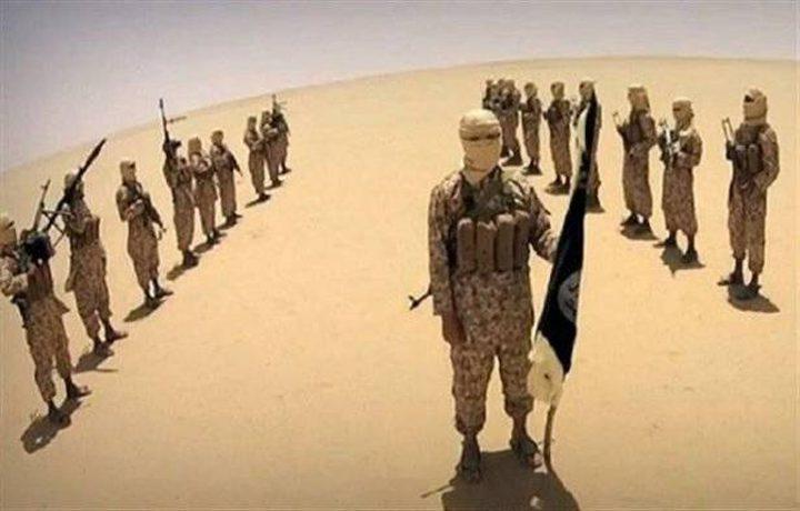 تقرير: مئات الطلبة في أميركا انضموا إلى داعش