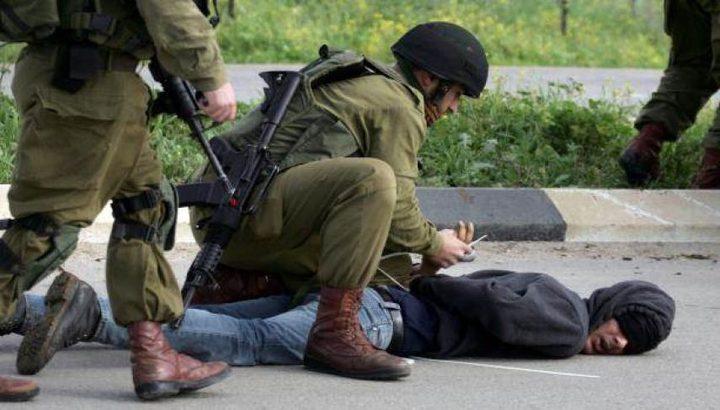 اعتقال ثمانية مواطنين في الضفة
