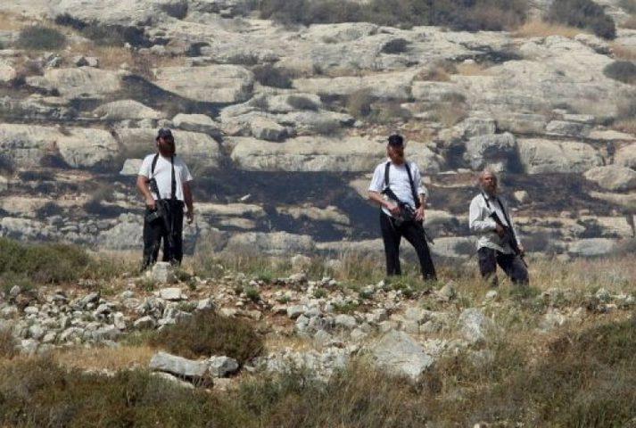 مستوطنون يسرقون زوايا حديد لمزارع جنوب بيت لحم