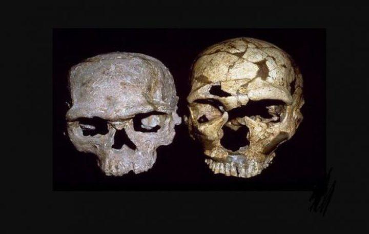 اكتشاف بقايا أقدم إنسان في العالم عمره 300 ألف سنة (صور)