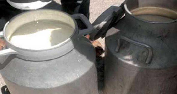 إتلاف 500 كغم من منتجات الألبان الفاسدة في بيت لحم