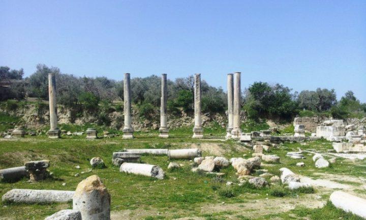 مستوطنون يقتحمون المنطقة الأثرية في بلدة سبسطية