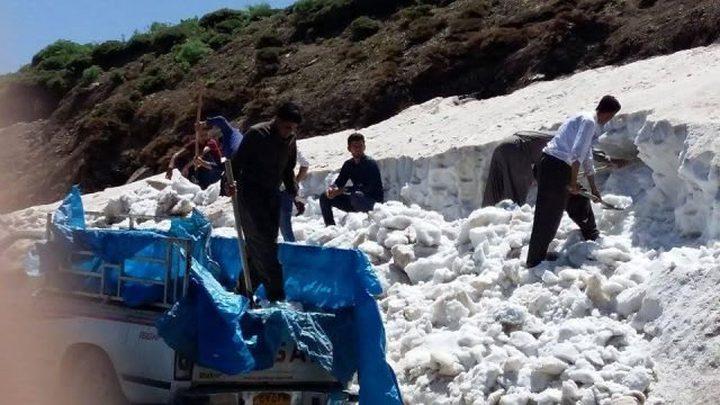 حصاد الثلج وبيعه تجاره رابحة في كردستان العراق