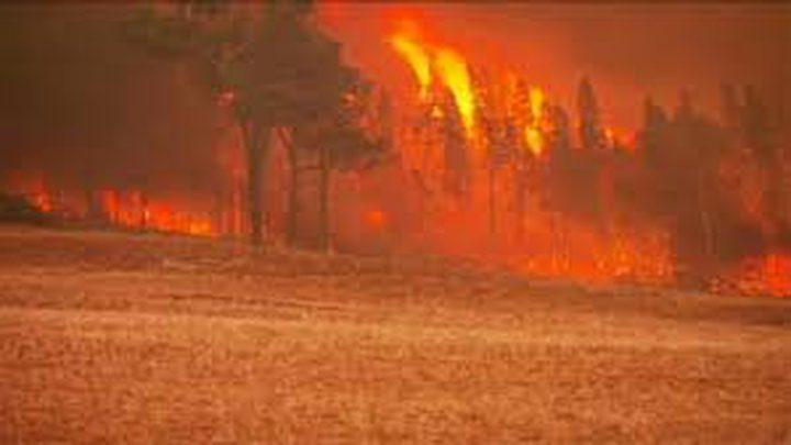 البرتغال: 57 قتيلا على الاقل جراء حرائق الغابات