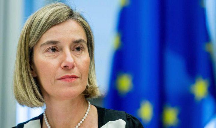 الاتحاد الأوروبي: يجب بقاء الخليج موحداً ومستقراً