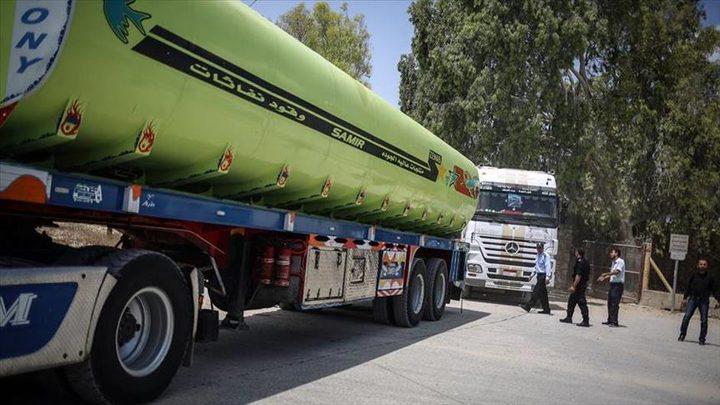 """ملحم لـ""""النجاح الإخباري"""": الوقود المصري تعقيد جديد ولن نكون مسؤولين عن أي تعثر"""