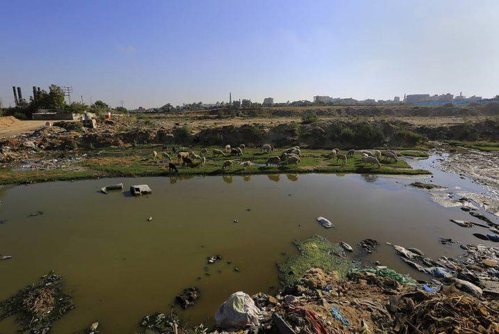 مستوطنات غلاف غزة تستغيث