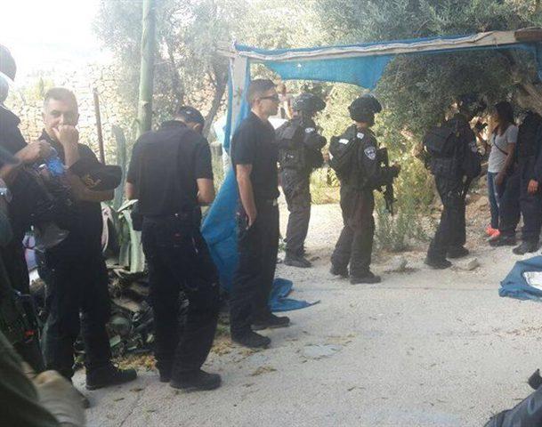 الاحتلال يوزع اخطارات هدم ويعتقل شقيقين في سلوان