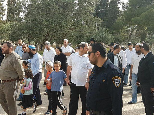137 مستوطنا يقتحمون الاقصى في ظل الحصار الخانق