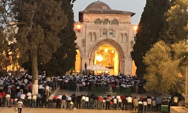 الاحتلال يفتح باب المطهرة فجر اليوم في المسجد الأقصى