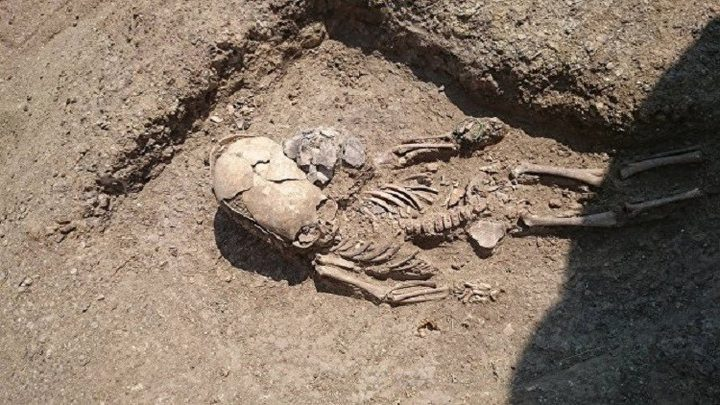 العثور على هيكل عظمي بجمجمة بيضاوية في روسيا