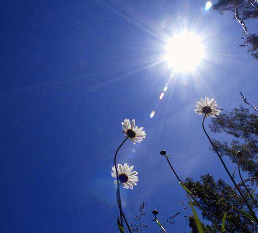 الطقس: انخفاض على دراجات الحرارة اليوم