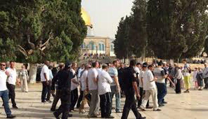 مستوطنون يواصلون اقتحاماتهم للمسجد الأقصى