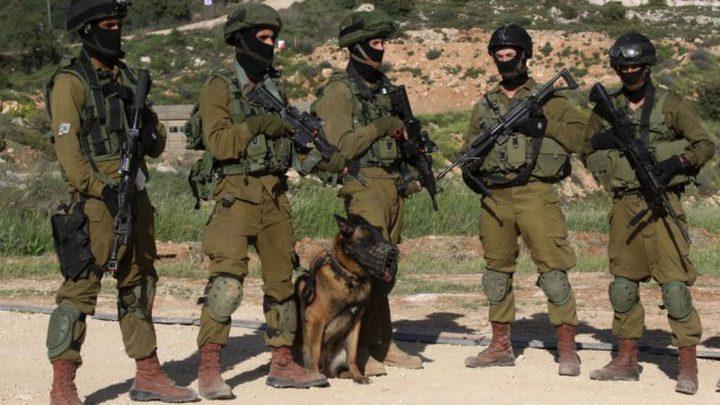 كلاب إسرائيلية تحرس رئيس وزراء الهند !