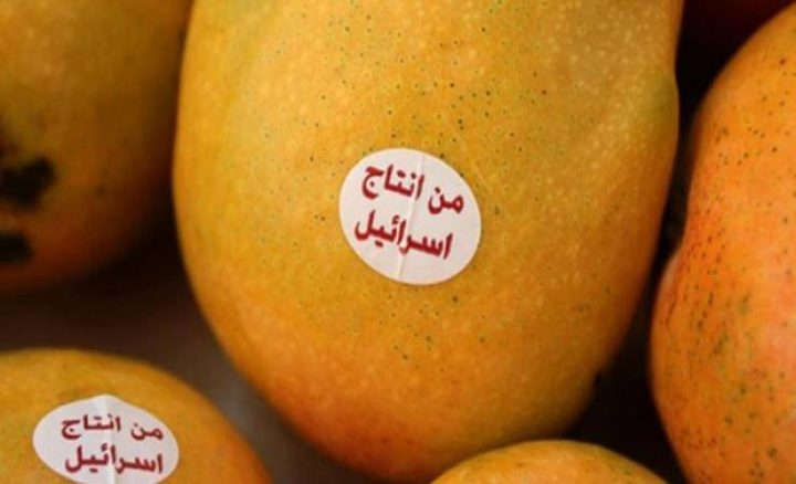 تحذيرات من انتشار المانجا الإسرائيلية بالأردن