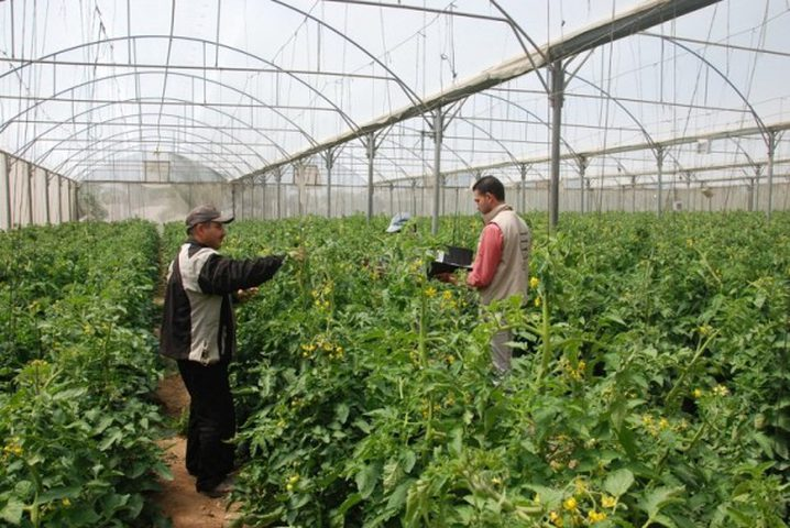 الإعلان عن منح دراسات عليا في برنامج التنمية المستدامة