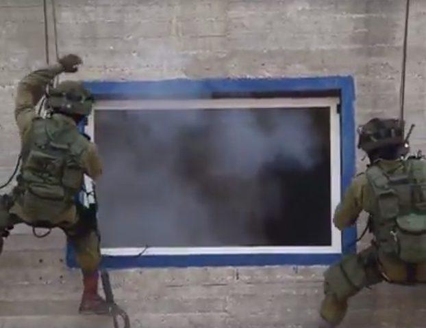 فيديو: الاحتلال يؤسس فريق القرود لقتل الفلسطينيين