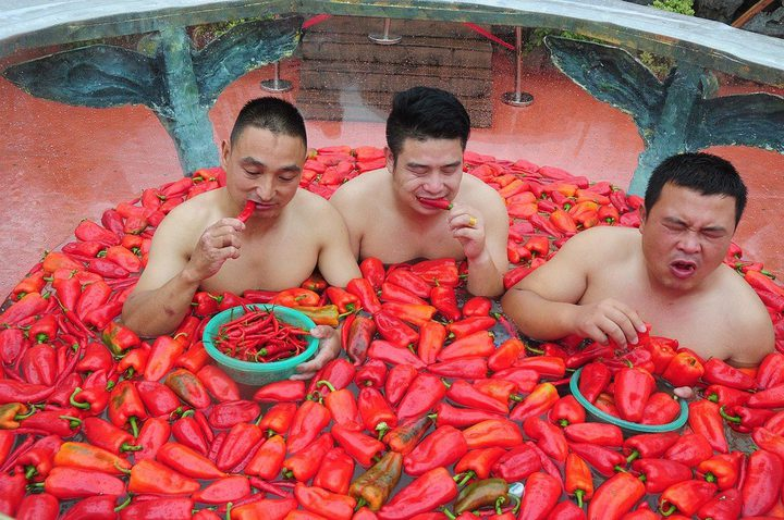 بالصور: أكل الفلفل الحار عندما يضعك التحدي بمواجهة مباشرة مع أخطر أنواع الخضار