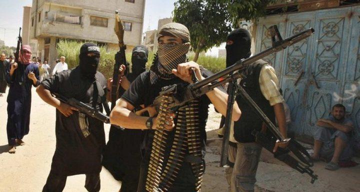 أبو الهول: الجماعات المتشددة ظهرت بدخول حماس التشريعي