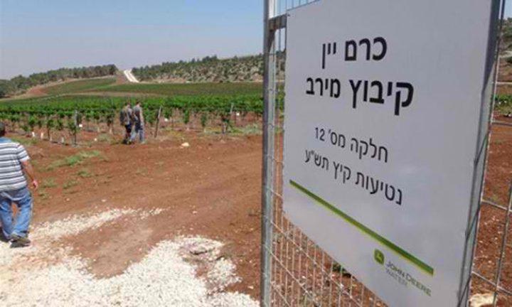 """دعوات اردنية لمقاطعة """"الفاكهة الإسرائيلية"""""""