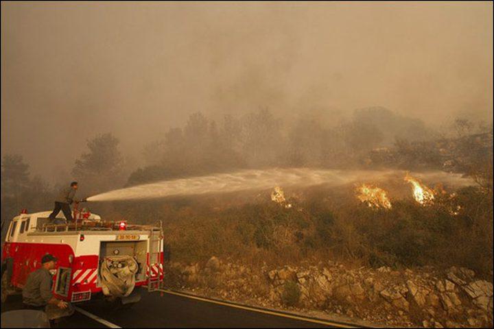 حريق في حرش جنوب الكرمل