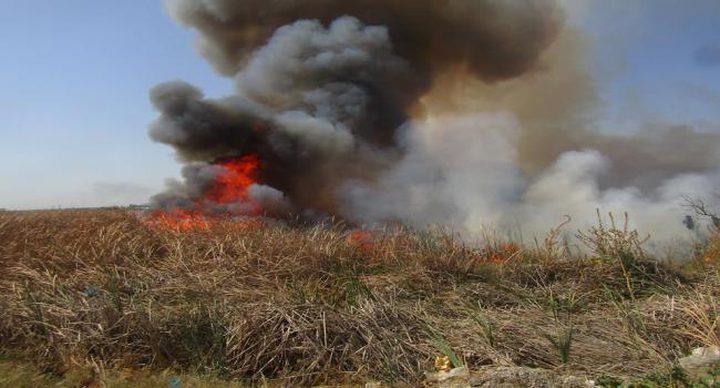اندلاع حريق في أراضي ببلدة نحالين