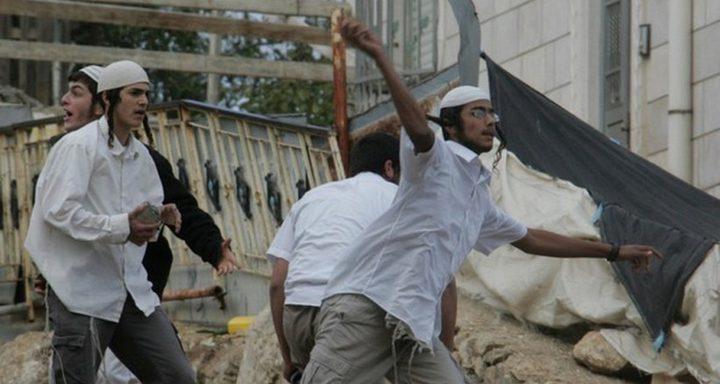 مستوطنون يرشقون منازل المواطنين بالحجارة في مسافر يطا