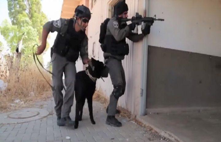 """وحدة جديدة في ما يسمى"""" حرس الحدود الإسرائيلي"""" (فيديو)"""