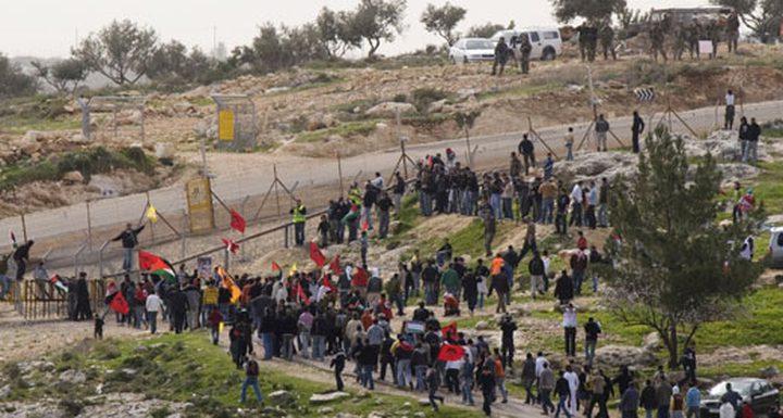 الاحتلال يصيب فتى خلال مظاهرة كفر قدوم السلمية
