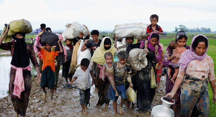 """المفتي العام يدين حملة الإبادة والتهجير القسري بحق مسلمي """"ميانمار"""""""