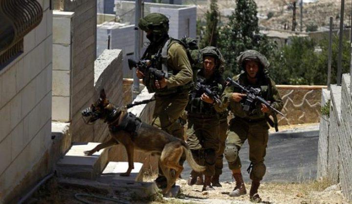 اعتداءات واعتقالات في القدس المحتلة